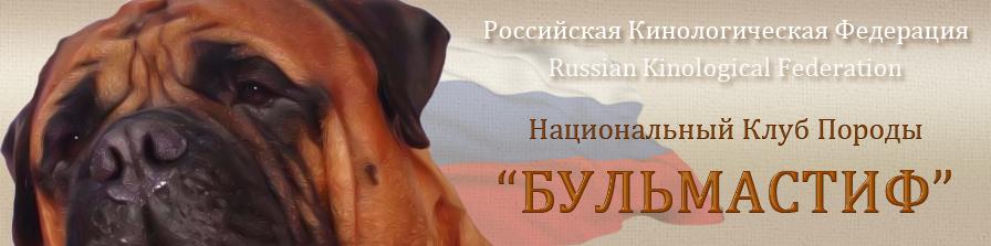 НКП Бульмастиф